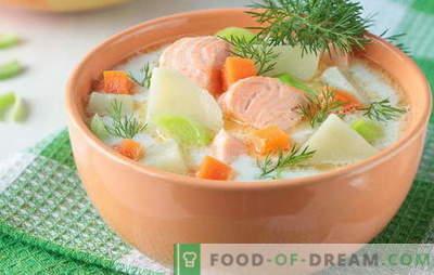 Супа од црвена риба - како возрасни и деца. Чекор по чекор рецепти за вкусни супи од црвена риба: лосос, лосос, розово лосос