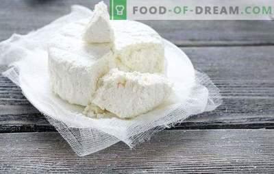 Errori di cottura della ricotta e del formaggio fatti in casa