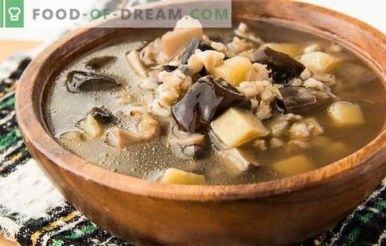 Супа од печурки од замрзнати печурки - арома на есен! Најдобрите рецепти од супа од печурки од замрзнати печурки