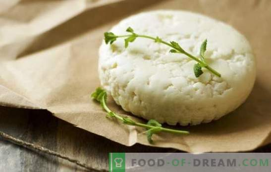 Како да направите козјо сирење дома: едноставни рецепти. Како да направите козјо сирење: препораки