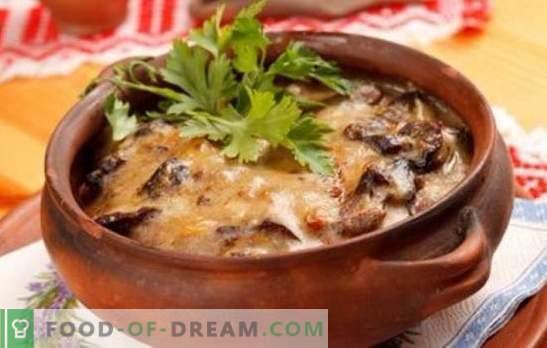 Компири со печурки во тенџере - за секојдневниот живот и празниците! Различни рецепти за компири со печурки во саксии