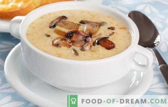 супа од супа од печурки - лудило на вкусови и ароми! Избор на рецепти за различни супи од супа од печурки за секој ден